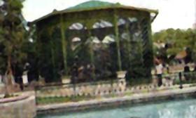Municipio de caguas puerto rico gabitos for Actividad de perros en el jardin botanico de caguas